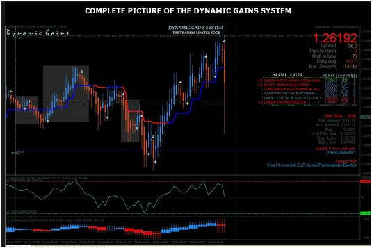 Dynamic Gain System Forex
